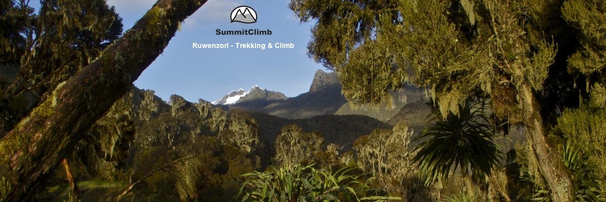 Ruwenzori - Mount Stanley