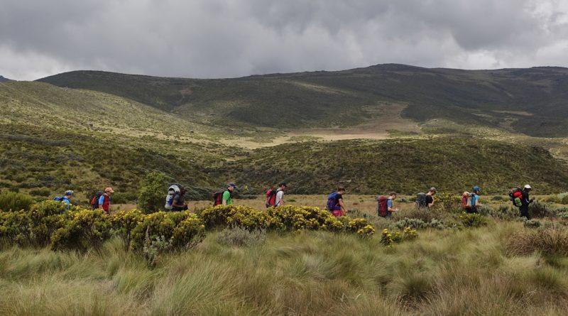 Trekking group on Mount Kenya, SummitClimb Felix Berg - Mount Kenya 2017 New Year 2018