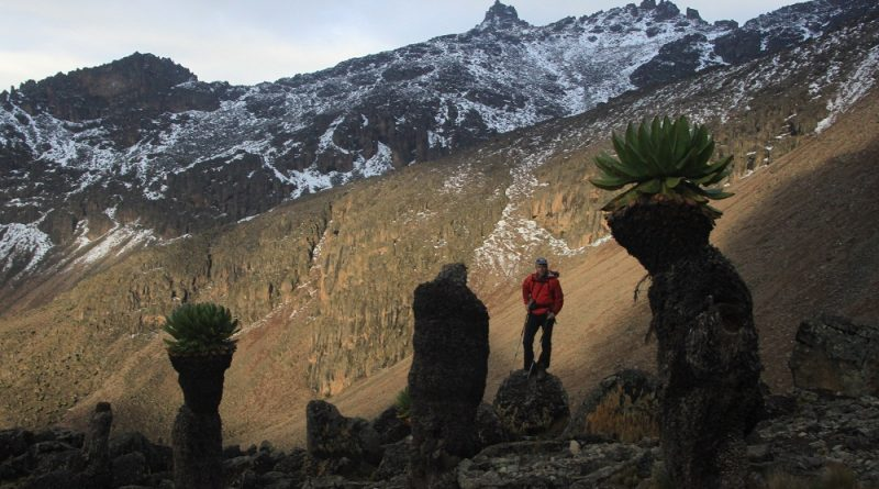 Mount Kenya, Trek and Climb