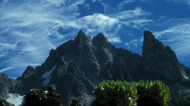 Mount Kenya, clouds and plants
