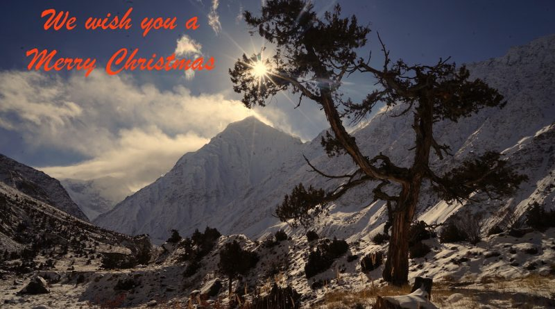 Xmas Card, Sun, Tree, Mountains