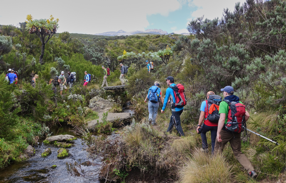 Mount-Kenya Trekking